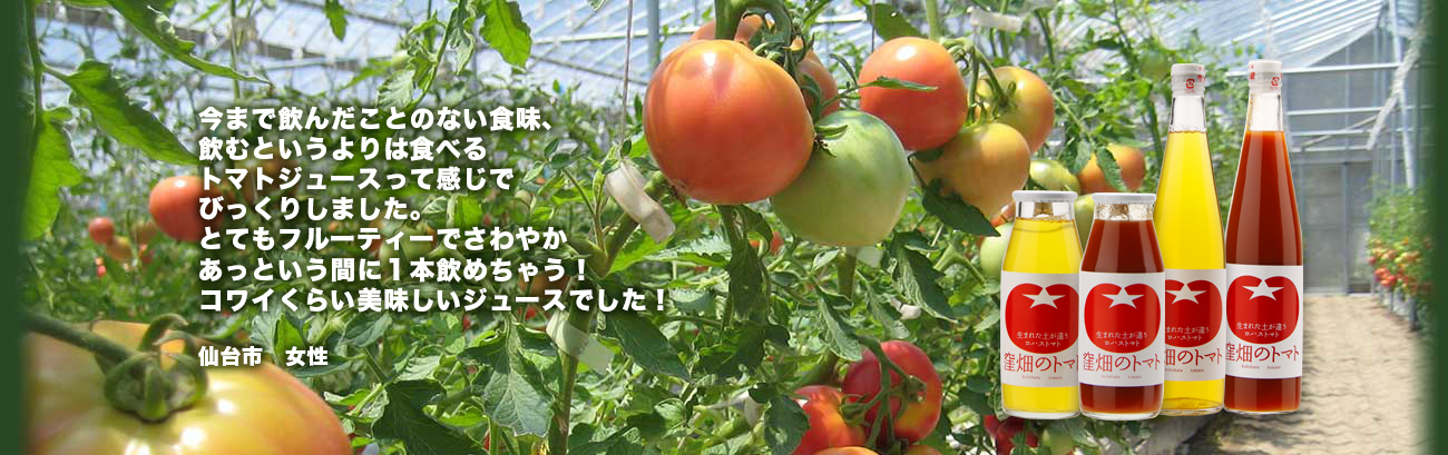 ビニールハウスのトマト